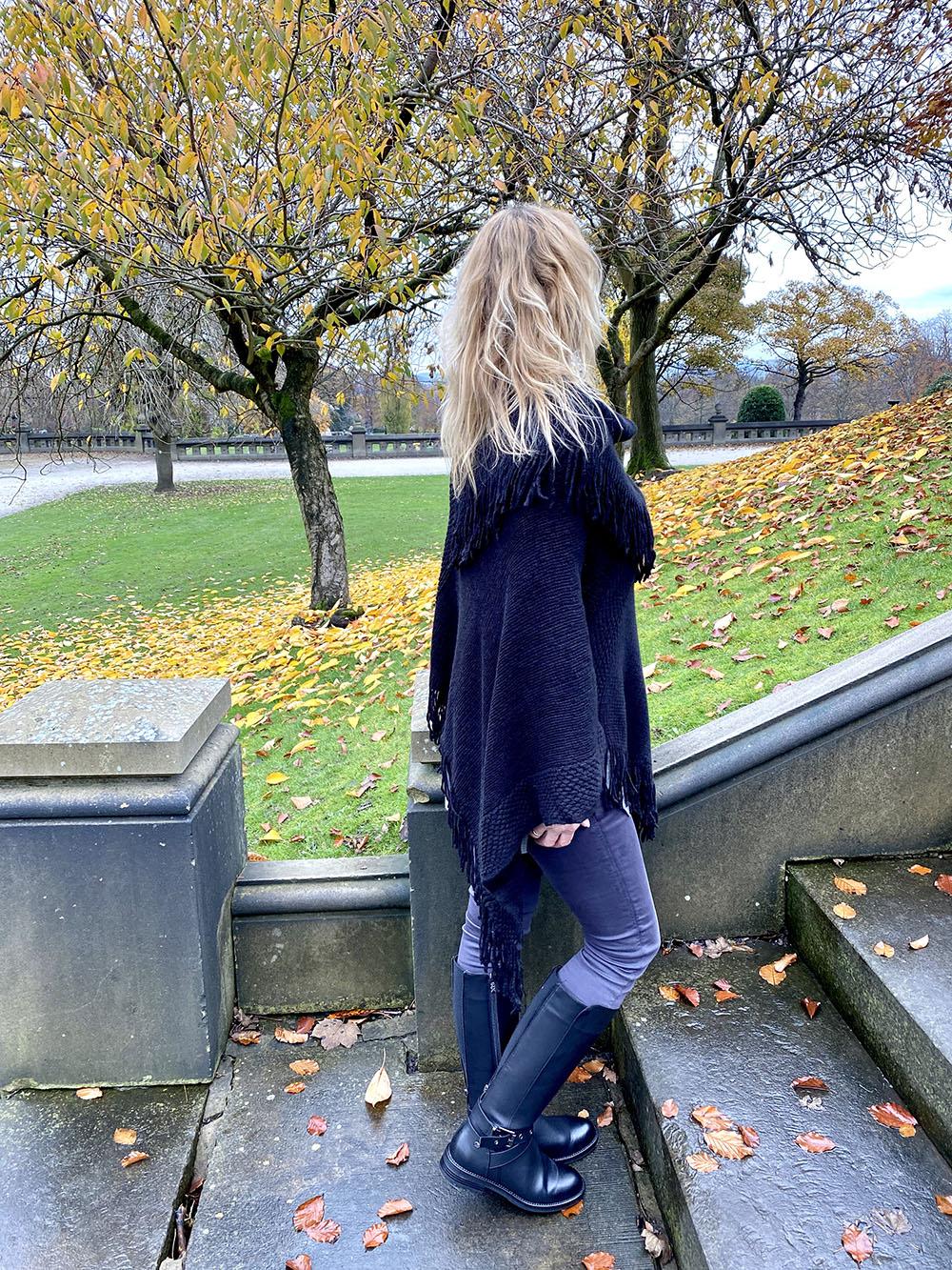 back image Main